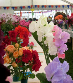 Marquee of flowers featuring sweetpeas